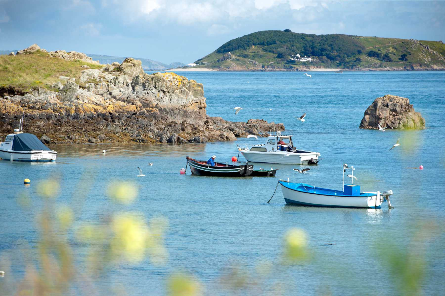 Island Beauty - Locate Guernsey